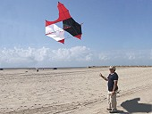 Cody Box Kite