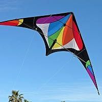 Freebird Stunt Kite