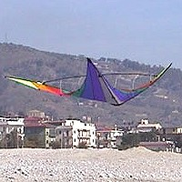 Jam Session Stunt Kite