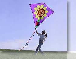 Diamond Kite | 65inch wingspan