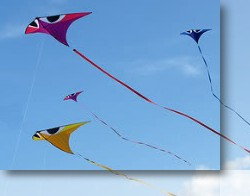 Light Wind Kites
