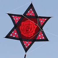 Red Rose Mesh Star