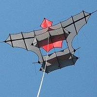 Treczoks Cody Box Kite