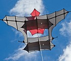 Trecoks Cody Box Kite