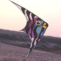 Ventura HP Rainbow Fish Stunt Kite