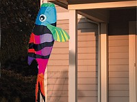Fish Windsock